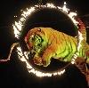 Цирки в Юрье